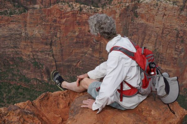 Figure 17. John McLarty admiring 2000 feet of stacked Navajo Sandstone crossbeds viewed from Observation Point (Zion National Park, UT).