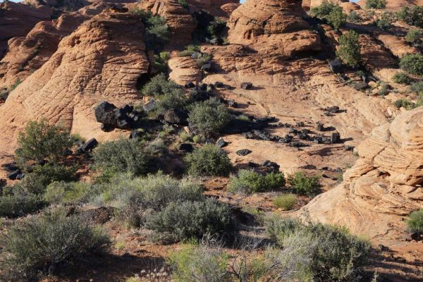Figure 6. Lava rocks tumbled onto eroded Navajo Sandstone (Snow Canyon State Park, St. George, UT).